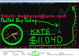 KATE2-copy-300x216 Wednesday December 28, 2016, Today Stock Market