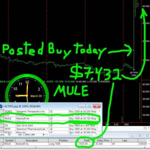 MULE-300x300 Tuesday March 20, 2018, Today Stock Market